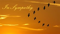 Sympathy - Birds of Dawn