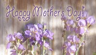 Mothers Day - Iris Wall